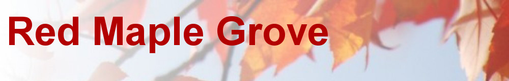 Red Maple Grove